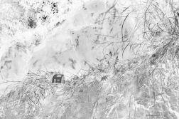 palimpseste_web_8